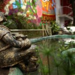 Profile picture of buddhahostels